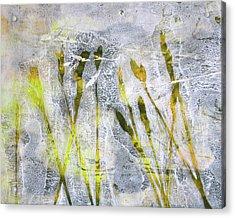 Wild Grass 3 Acrylic Print