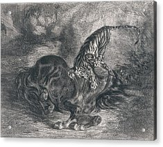 Wild Horse Felled By A Tiger Acrylic Print by Eugene Delacroix