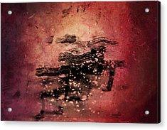 Wild Horses Acrylic Print by Az Jackson
