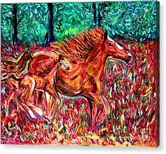 Wild Horses Acrylic Print