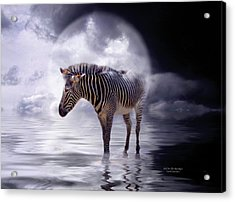 Wild In The Moonlight Acrylic Print