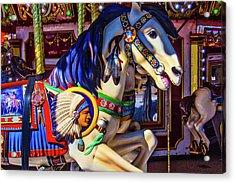 Wild Indian Horse Acrylic Print