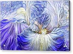Acrylic Print featuring the mixed media Wild Iris Blue by Carol Cavalaris