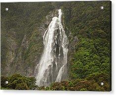Wild New Zealand Acrylic Print