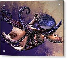 Wild Octopus Acrylic Print