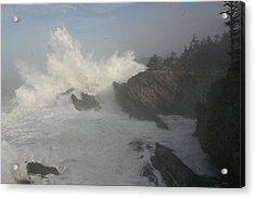 Wild Oregon Coast Acrylic Print by James Thompson
