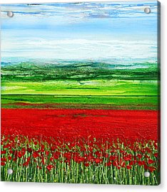 Wild Poppies Corbridge Northumberland 2009 Acrylic Print by Mike   Bell