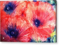 Acrylic Print featuring the painting Wild Poppies by Trudi Doyle