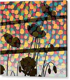 Wild Poppy Silhouette Acrylic Print by Ruth Palmer