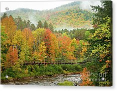 Wild River Bridge Acrylic Print by Susan Cole Kelly