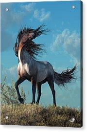 Acrylic Print featuring the digital art Wild Roan by Daniel Eskridge