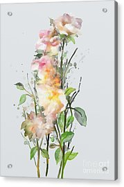 Acrylic Print featuring the painting Wild Roses by Ivana Westin