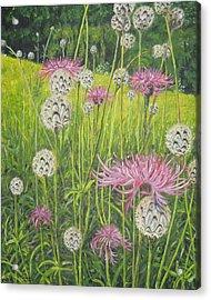 Wild Thistles Acrylic Print