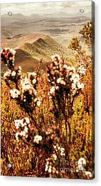 Wild West Mountain View Acrylic Print by Jorgo Photography - Wall Art Gallery