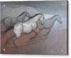 Wild White Horses Acrylic Print