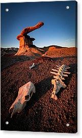 Wild Wild West Acrylic Print by Edgars Erglis