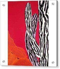 Wild,  Wild West Acrylic Print