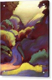 Wildcat Canyon Acrylic Print