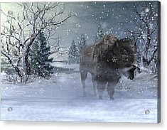 Wilderness Acrylic Print by Betsy Knapp