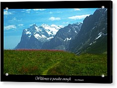 Wilderness Is Acrylic Print by Jessica T Peterson