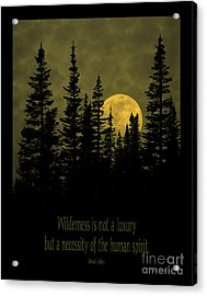 Wilderness Is Not A Luxury Acrylic Print by John Stephens