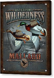Wilderness Mallard Acrylic Print by JQ Licensing