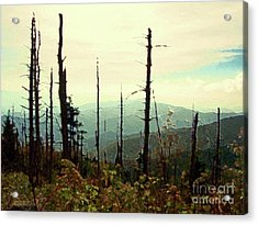Acrylic Print featuring the mixed media Wildfire by Desiree Paquette