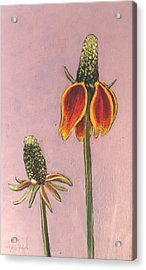 Wildflower 1 Acrylic Print by Ixchel Amor