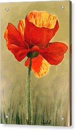Wildflower 2 Acrylic Print by Ixchel Amor