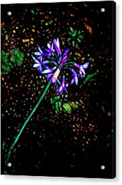 Acrylic Print featuring the photograph Wildflower by Ann Powell