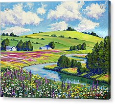 Wildflower Fields Acrylic Print by David Lloyd Glover