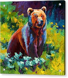 Wildflower Grizz Acrylic Print