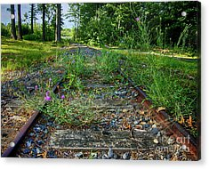 Wildflowers Along The Tracks Acrylic Print