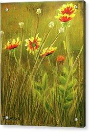 Wildflowers Acrylic Print by Joan Swanson