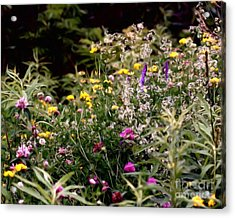 Acrylic Print featuring the painting Wildflowers by Smilin Eyes  Treasures
