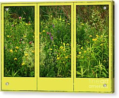 Acrylic Print featuring the photograph Wildflowers Through A Window by Smilin Eyes  Treasures