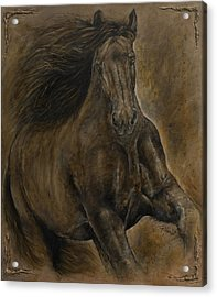 Wildheart....sang To Me Acrylic Print by Paula Collewijn -  The Art of Horses