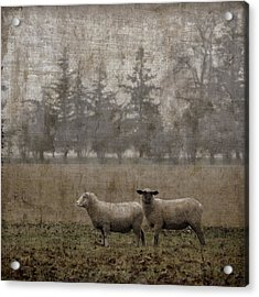 Willamette Valley Oregon Acrylic Print by Carol Leigh