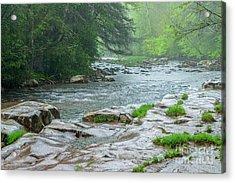 Williams River Pouring Rain Acrylic Print by Thomas R Fletcher
