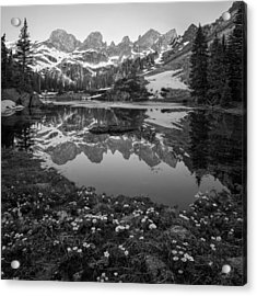 Willow Lake Black And White Acrylic Print by Aaron Spong