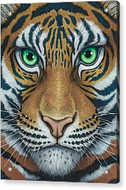Wils Eyes Tiger Face Acrylic Print
