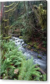Acrylic Print featuring the photograph Wilson Creek #14 by Ben Upham III