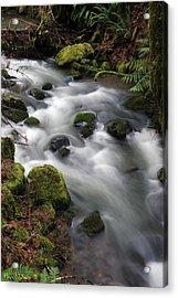 Acrylic Print featuring the photograph Wilson Creek #15 by Ben Upham III