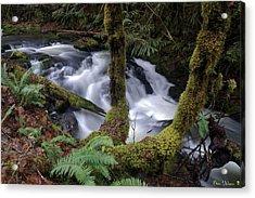 Acrylic Print featuring the photograph Wilson Creek #16 by Ben Upham III