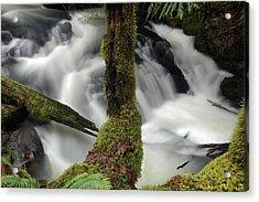Acrylic Print featuring the photograph Wilson Creek #17 by Ben Upham III