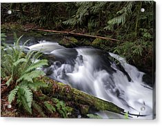 Acrylic Print featuring the photograph Wilson Creek #18 by Ben Upham III
