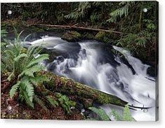 Acrylic Print featuring the photograph Wilson Creek #19 by Ben Upham III