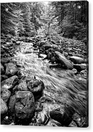 Acrylic Print featuring the photograph Wilson Creek 2 by Alan Raasch