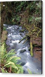 Acrylic Print featuring the photograph Wilson Creek #20 by Ben Upham III