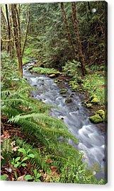 Acrylic Print featuring the photograph Wilson Creek #21 by Ben Upham III